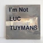 Luc Tuymans15x15